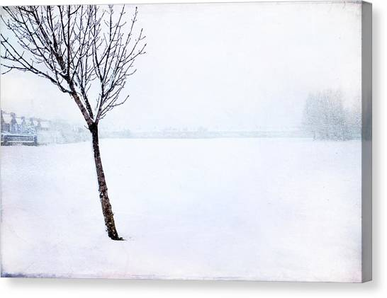Winter Whiteout Canvas Print