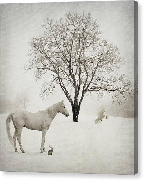 Winter Wishes Canvas Print