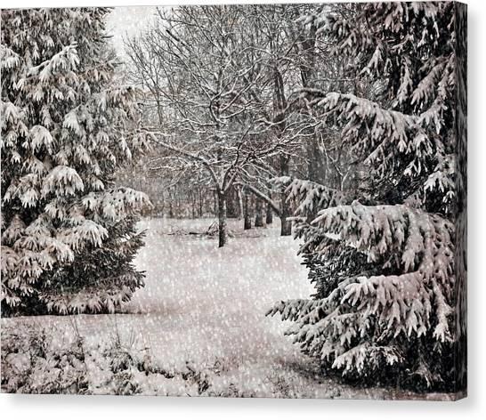 Winter Wonder 7  Canvas Print