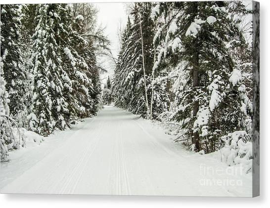 Winter Wonder Land Canvas Print