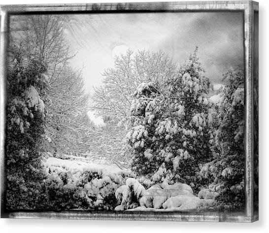 Winter Wonderland With Filmic Border Canvas Print