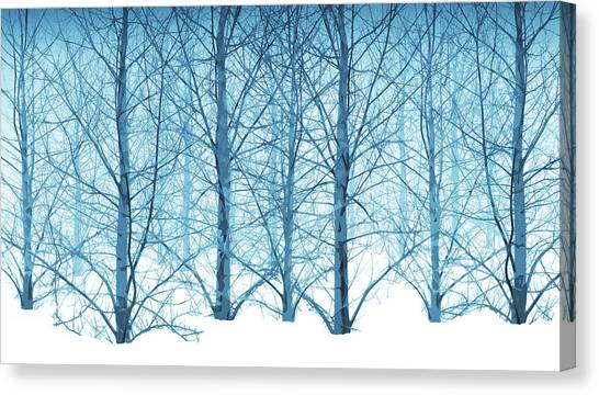 Winter Woodland In Blue Canvas Print