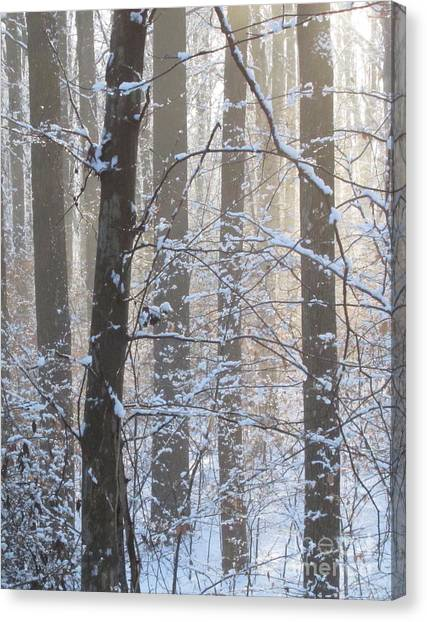 Winter Woodland Canvas Print
