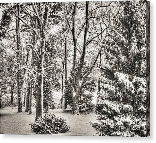Winter Zauber 03 Canvas Print