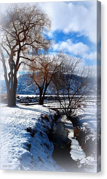 Wintercreek 2/8/2014  Canvas Print