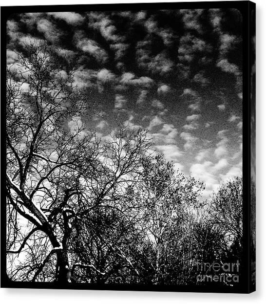 Winterfold - Monochrome Canvas Print