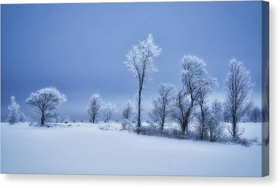 Quebec Canvas Print - Winterland by Christian Duguay