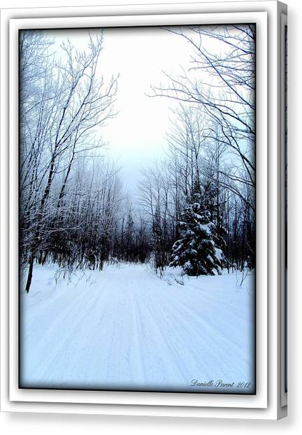 Winterlude In Abitibi Temiscamingue Quebec  Canvas Print