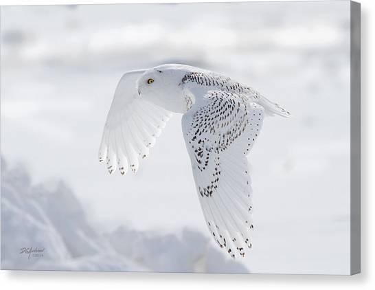 Winters Angel Canvas Print