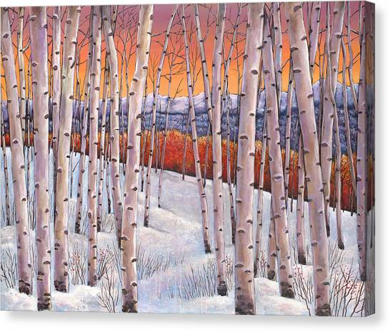 Colorado Canvas Print - Winter's Dream by Johnathan Harris