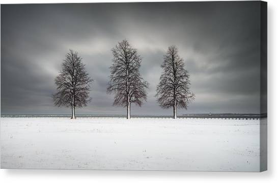 Winter's Halo Canvas Print