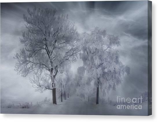 Painterly Canvas Print - Winter's Magic by Veikko Suikkanen