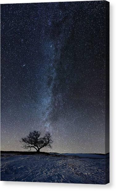 Andromeda Canvas Print - Winter's Night by Aaron J Groen