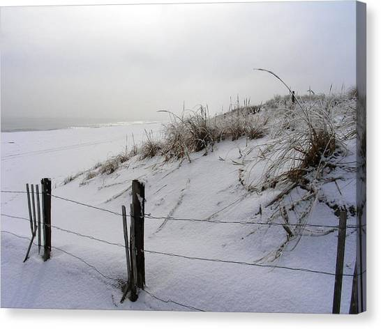 Winters Snow At Island Beach State Park Canvas Print by Vincent DeLucia