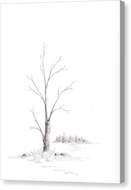Winter's Tree Canvas Print