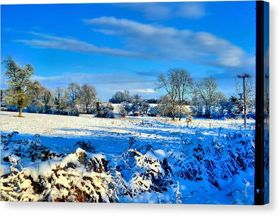 Winters View Canvas Print by Dave Woodbridge