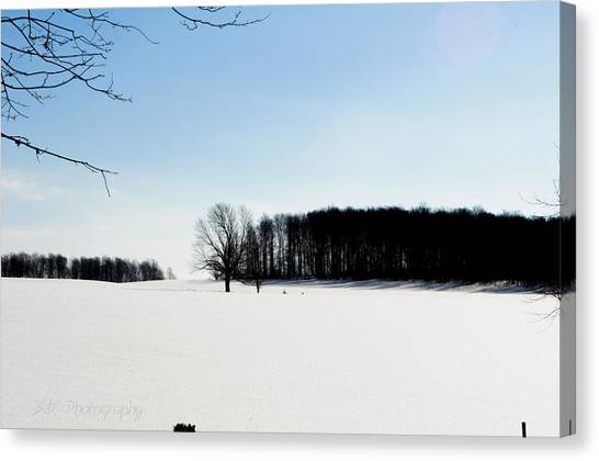 Winterscape 2  Canvas Print by BandC  Photography