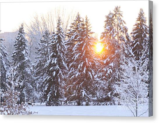 Wintry Sunset Canvas Print