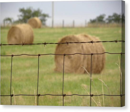 Wire And Hay Canvas Print