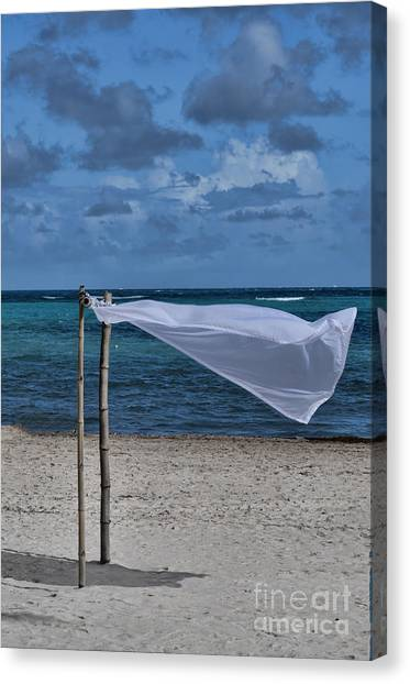 With The Wind Canvas Print