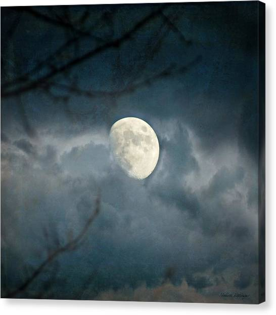 Within Her Misty Veil Canvas Print