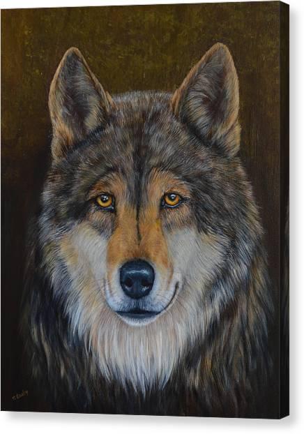 Wolf Alpha Canvas Print