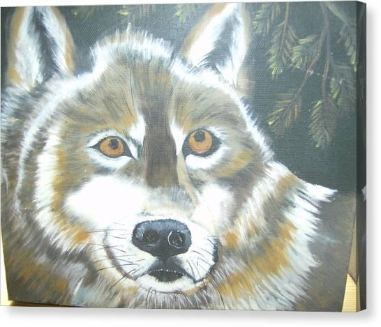 Wolf Gaze Canvas Print