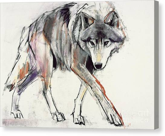 Print On Canvas Print - Wolf  by Mark Adlington