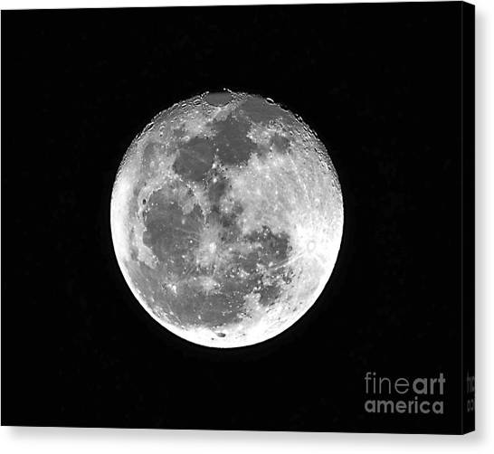 Wolf Moon Canvas Print - Wolf Moon Waning by Al Powell Photography USA