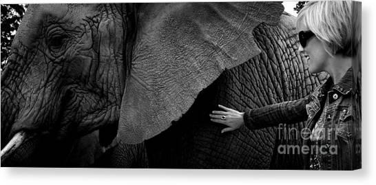Woman Touching An Elephant Canvas Print