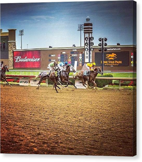 Race Horses Canvas Print - Won By A #nose. #lonestarpark by Robert Bellomy