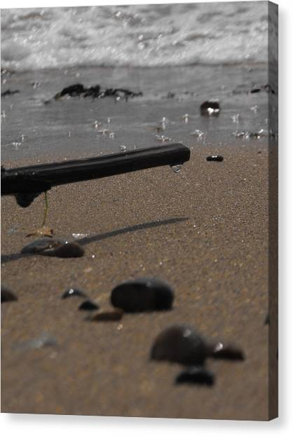 Wonder On This Beach Canvas Print