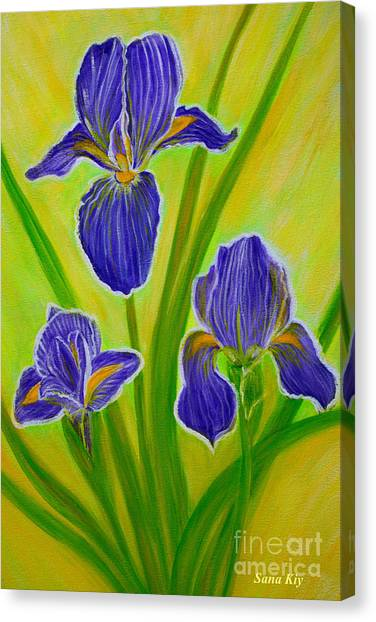 Wonderful Iris Flowers 3 Canvas Print