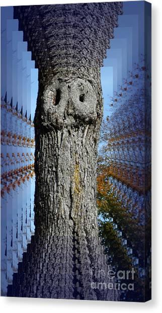 Woo Tree Canvas Print