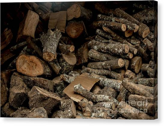 Wood Logs Canvas Print by Mina Isaac