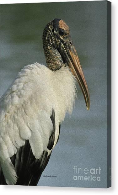 Wood Stork In Oil Canvas Print