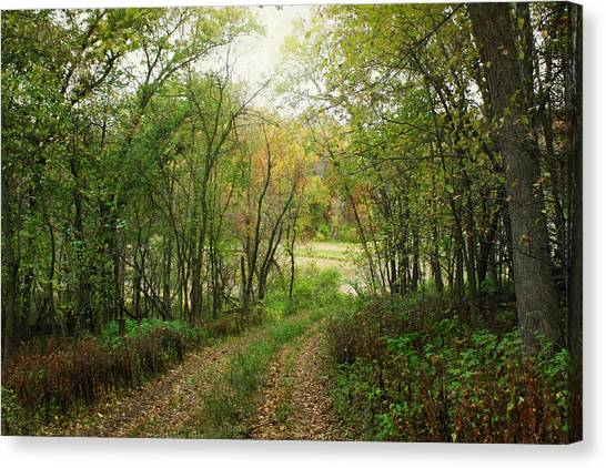 Wooded Path Canvas Print