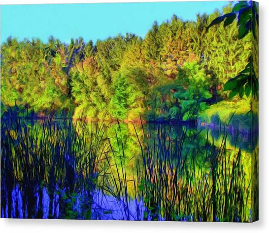Wooded Shore Through Reeds Canvas Print
