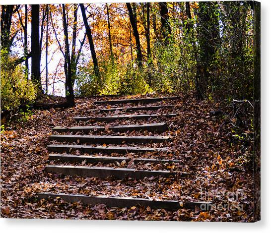 Wooded Stairs Canvas Print