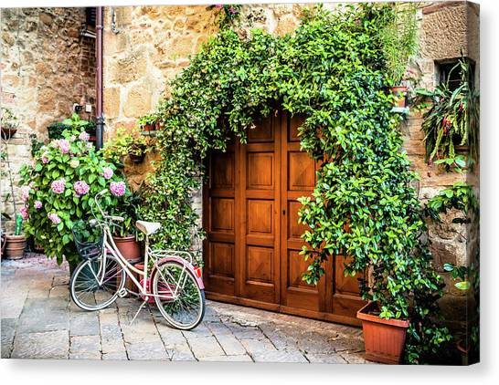 Wooden Gate With Plants In An Ancient Canvas Print