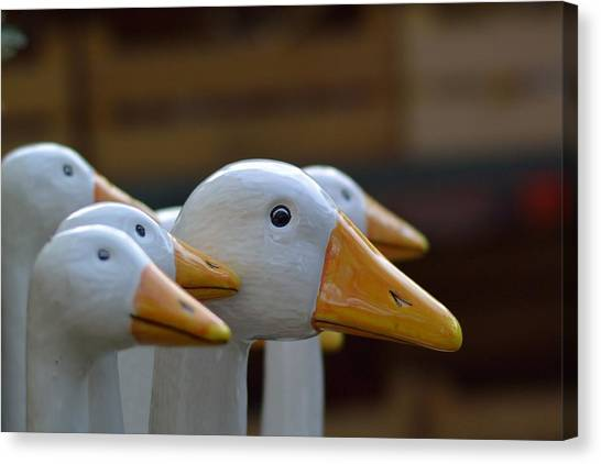 Decorative Canvas Print - Wooden Geese by Bunny My Yummy