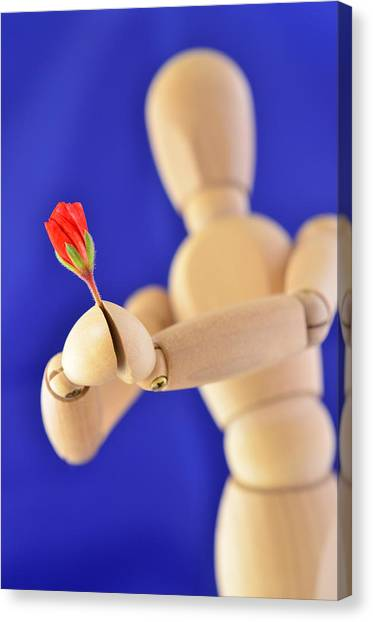Wooden Man -  Flower For You Canvas Print by Gynt