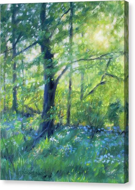 Woodland Walk Canvas Print - Woodland Sunset by Bonnie Mason
