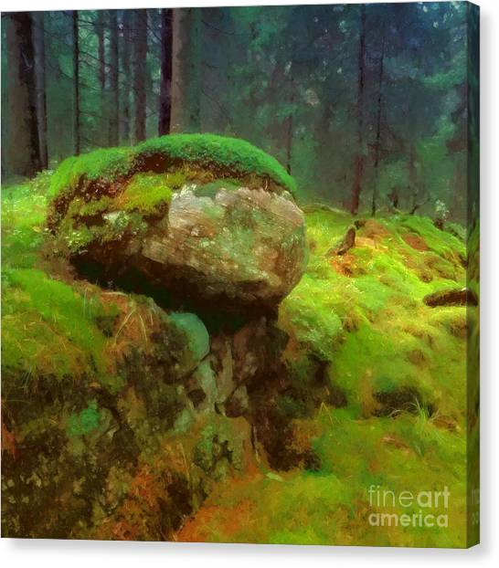 Mossy Forest Canvas Print - Woodlands by Lutz Baar