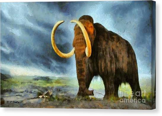 Mammoth Tusk Canvas Prints (Page #4 of 4) | Fine Art America