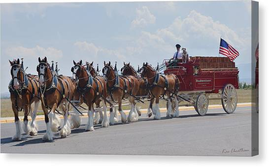 World Renown Clydesdales 2 Canvas Print