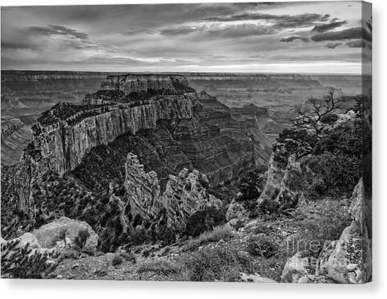 North Rim Canvas Print - Wotan's Throne North Rim Grand Canyon National Park - Arizona by Silvio Ligutti