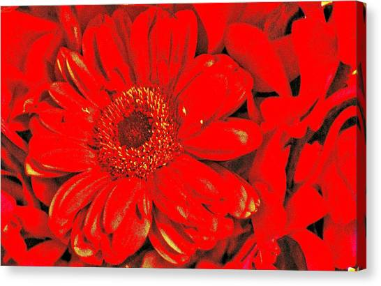 Wow Red Canvas Print