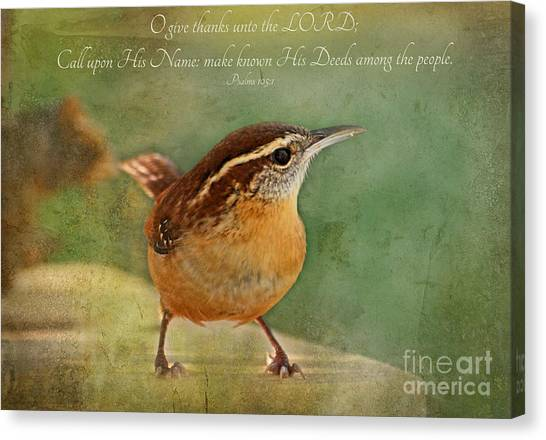 Wren With Verse Canvas Print
