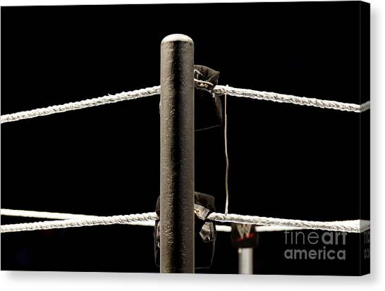 Wwe Ringside Canvas Print